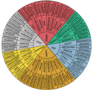 wheel of emotion